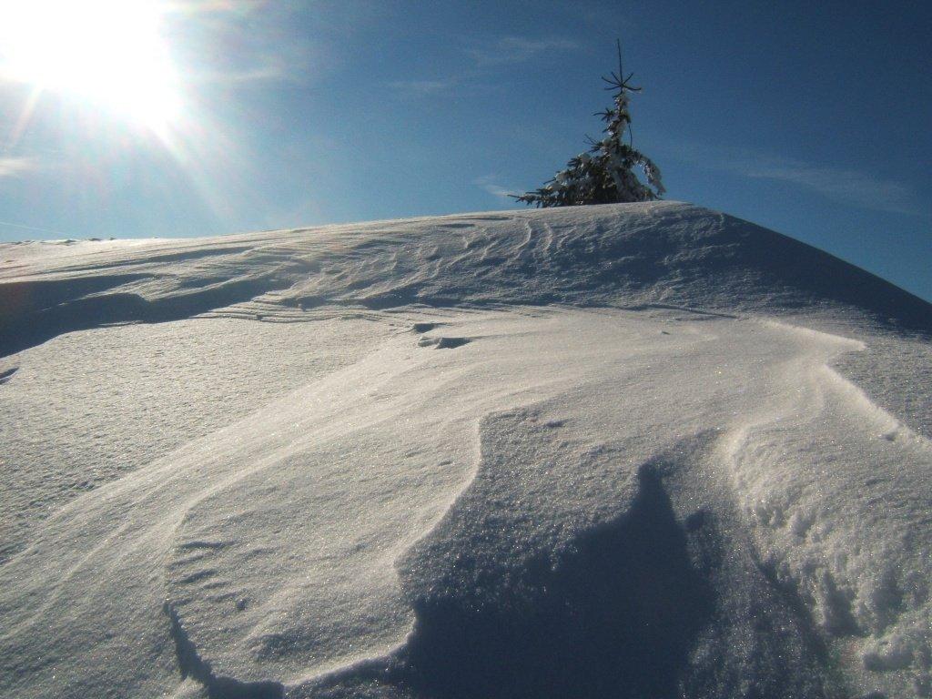 снег зима горы