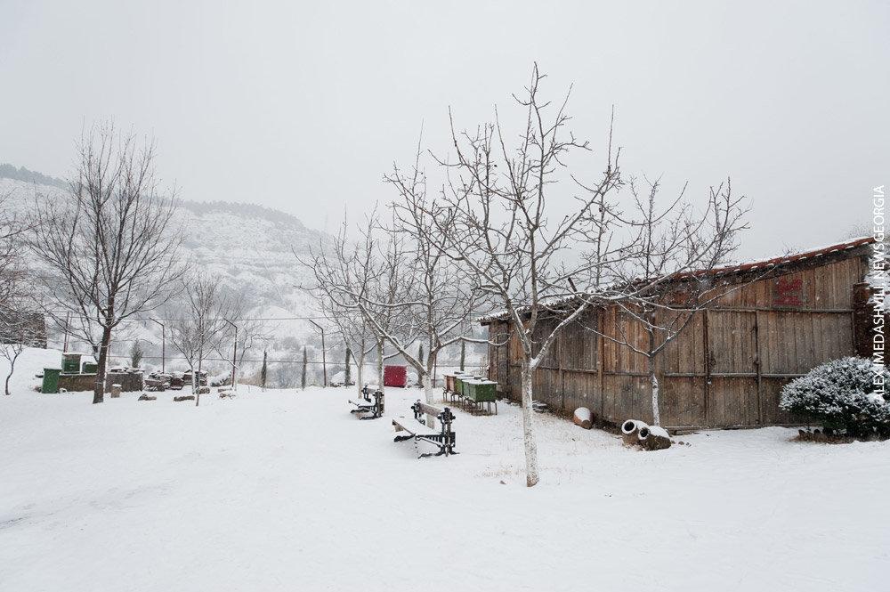 зима снег мороз село