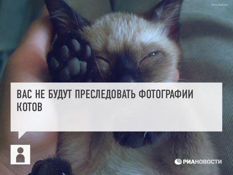 соцсеть