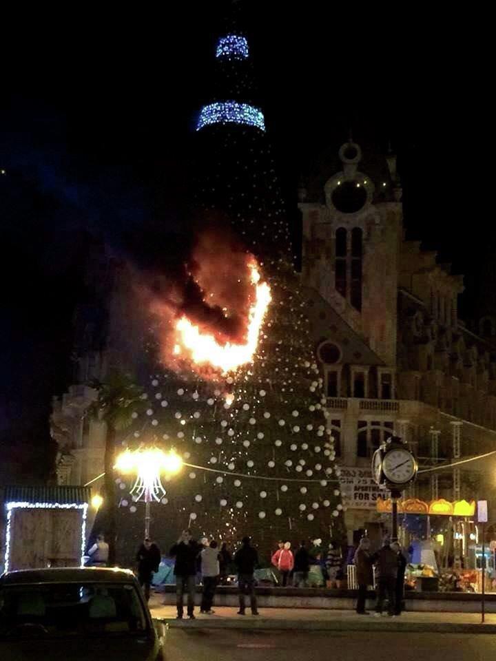 сгоревшая елка