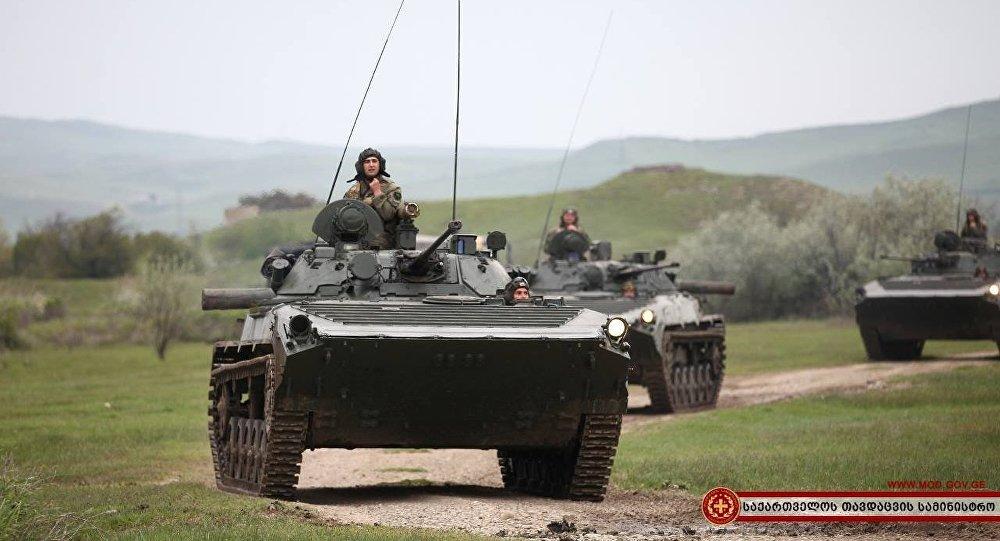 Грузинская армия учения