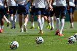 Футбол. Чемпионат мира - 2014. Тренировка сборной Нидерландов