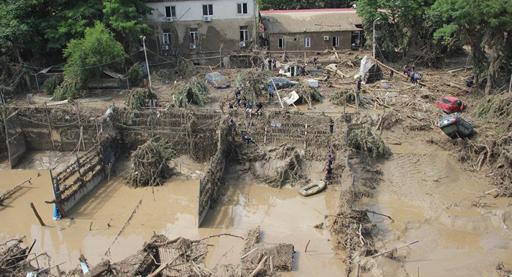 Тбилисский зоопарк после наводнения