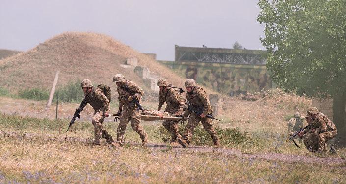 НАТО отметила прогресс в усилении обороноспособности Грузии