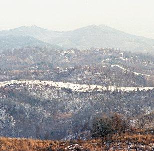 კორეის დემილიტარიზებული ზონა