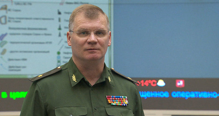 Спикер Минобороны РФ раскрыл подробности новых ударов ВКС РФ по ИГ в Сирии