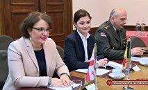 Встреча министра обороны Бельгии Стевена Вандепу с Тинатин Хидашели