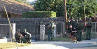 Бойцы спецназа и полицейские оцепили место стрельбы в Калифорнии