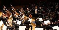 Грузинский камерный оркестр