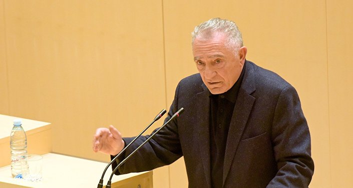 Гоги Топадзе выступает в парламенте.