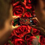Посетители фотографируют стену с изображением роз на открытии мультимедийного проекта Резо Габриадзе Необыкновенная выставка.