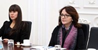 Спецдокладчик ООН по вопросам насилия против женщин Дубравка Шимонович