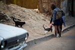 Девочки с кошками на одной из тбилисских улиц