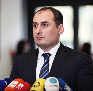 Министр экономики и устойчивого развития Грузии Дмитрий Кумсишвили