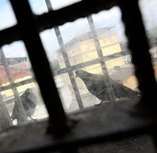 საპატიმროს ფანჯარა