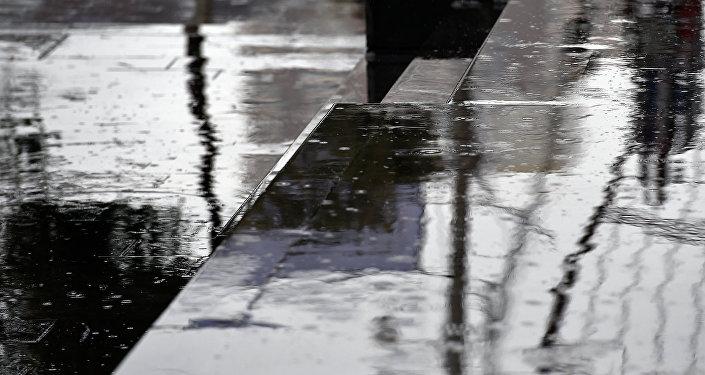 Дождь, дождливая погода
