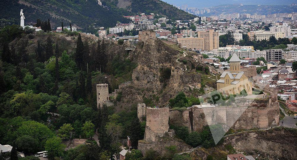 Вид на статую Мать Грузии, территорию тбилисского Ботанического сада (слева) и крепость Нарикала (на переднем плане).