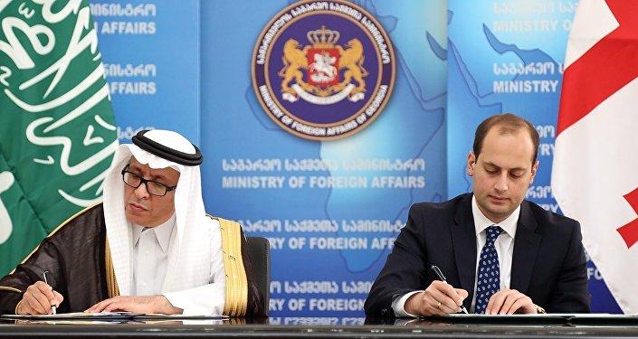 ВТбилиси приехал генеральный секретарь  Совета сотрудничества арабских стран  Персидского залива