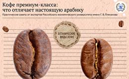 Кофе премиум-класса: что отличает настоящую арабику