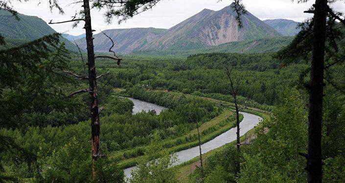 Вид на реку Быструю со смотровой площадки в Быстринском природном парке в Камчатском крае