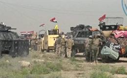 Наступление иракских военных на захваченный боевиками ИГ город Эль-Фаллуджа