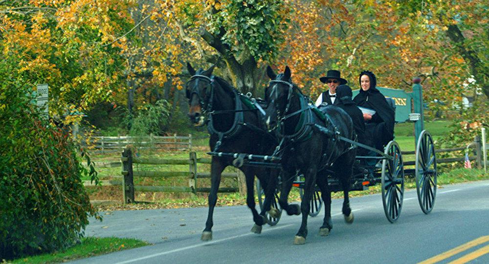 Амиши предпочитают лошадей как транспорт