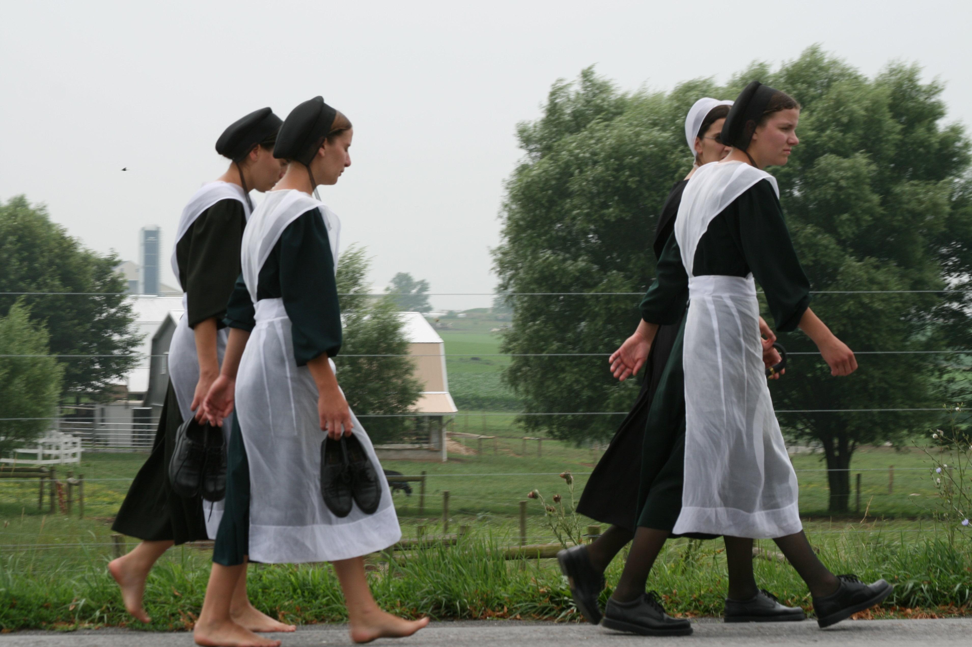 Девушки амиши