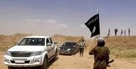 Боевики Исламского государства, ИГ