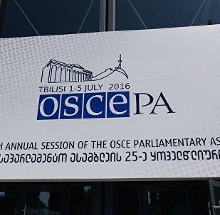 ПА ОБСЕ в Тбилиси