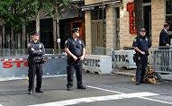 პოლიცია ნიუ-იორკში