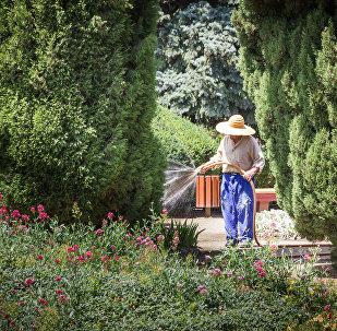 Садовник поливает цветы в Тбилисском Ботаническом саду