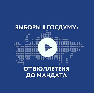Как стать депутатом. Подробно о выборах в Госдуму РФ