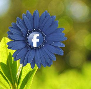 ფეისბუქი