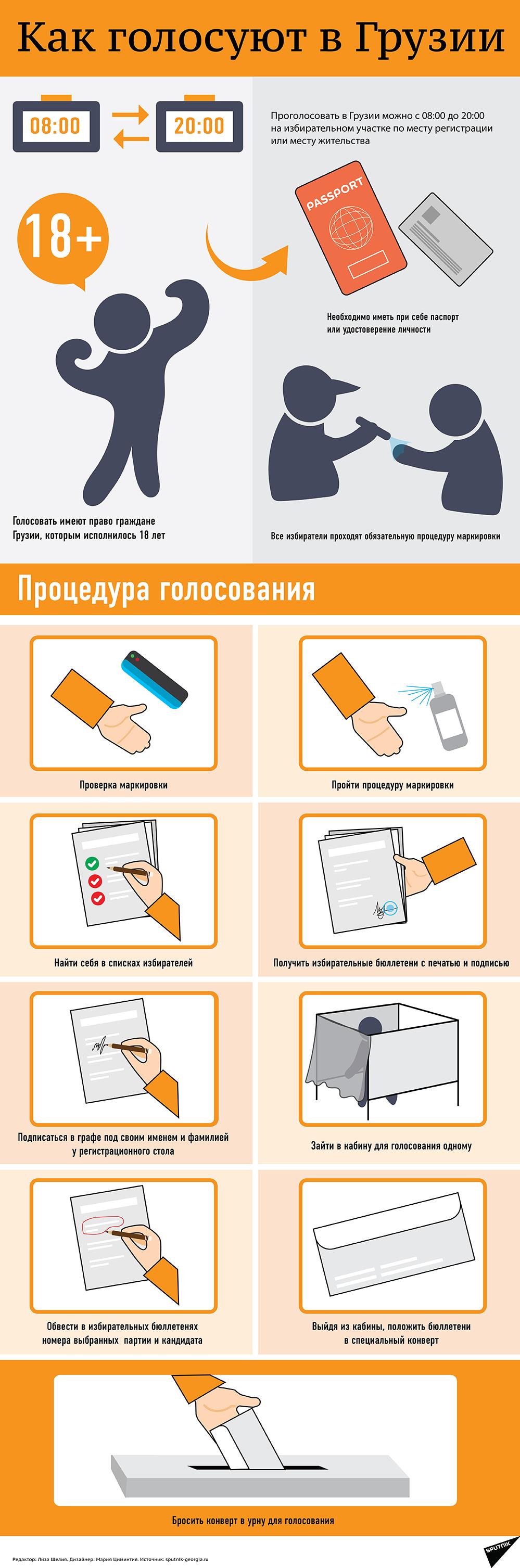 Выборы в Грузии: как голосовать