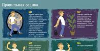 Советы врача: как детям правильно держать осанку