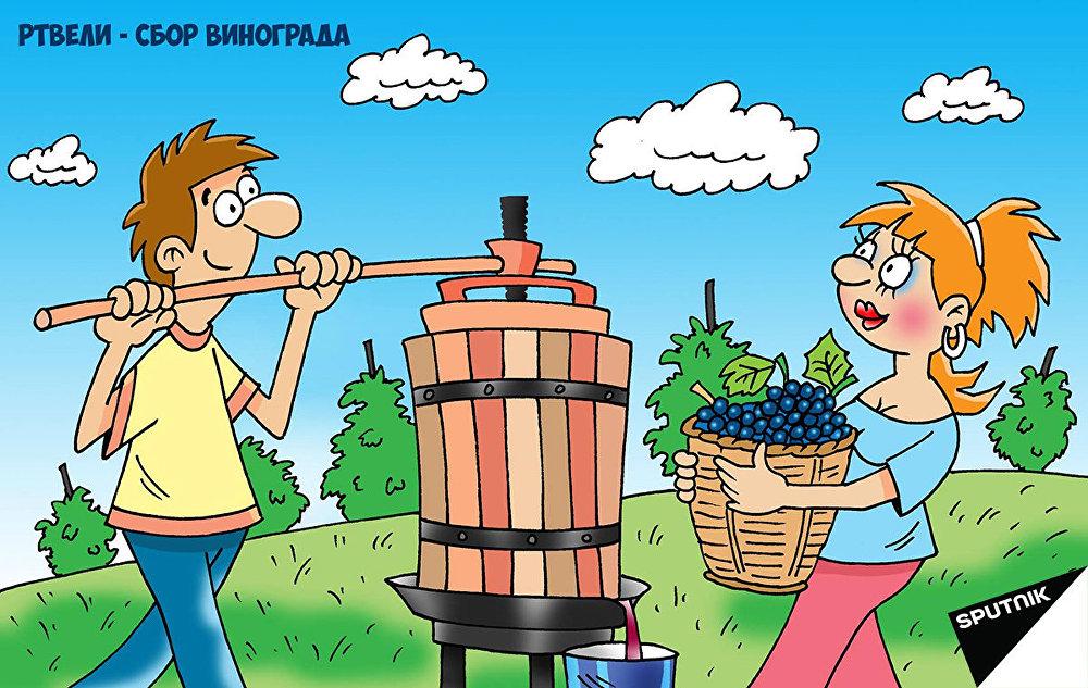 Не все так просто в Грузии. Туристов здесь заставляют работать: в сборе винограда участвуют все! А особо талантливым доверяют отжимать виноград - от того, какой сок зависит вкус будущего вина.