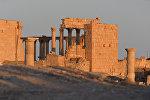 Древняя Пальмира