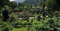 Дома в высокогорной Аджарии