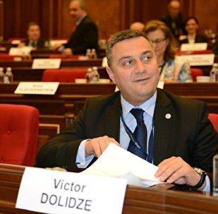 Депутат парламента Грузии Виктор Долидзе