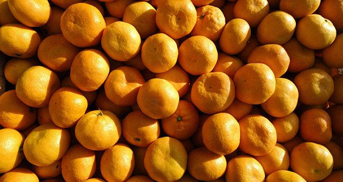 Сбор урожая мандаринов