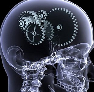საჭიროა თუ არა ტვინი?!