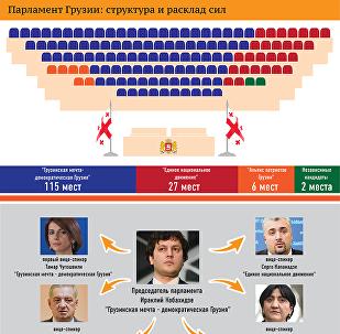 Парламент Грузии: структура и расклад сил