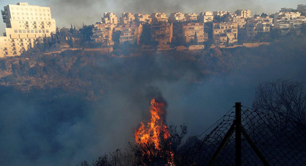 Из-за пожаров вИзраиле задержаны подозреваемые вподжогах студенты