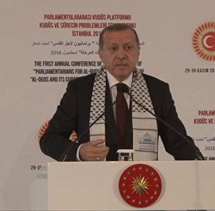 Эрдоган назвал свержение Асада целью военной операции Турции в Сирии