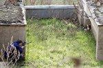 Имитированная спасательная операция в Тбилисском зоопарке