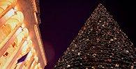 Главная новогодняя елка Грузии у здания парламента страны на проспекте Руставели