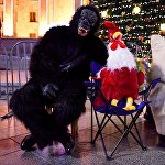 У главной новогодней елки можно сфотографироваться не только с Дед Морозом, но и с символами уходящего и наступающего нового года - Обезьяной и Петухом