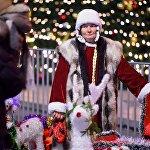 В Грузии как правило, Дед Мороз приходит поздравлять с Новым годом один, без Снегурочки. Однако сейчас у главной новогодней елки страны была замечена подружка Дед-Мороза, которая помогала ему фотографироваться с жителями и гостями Тбилиси