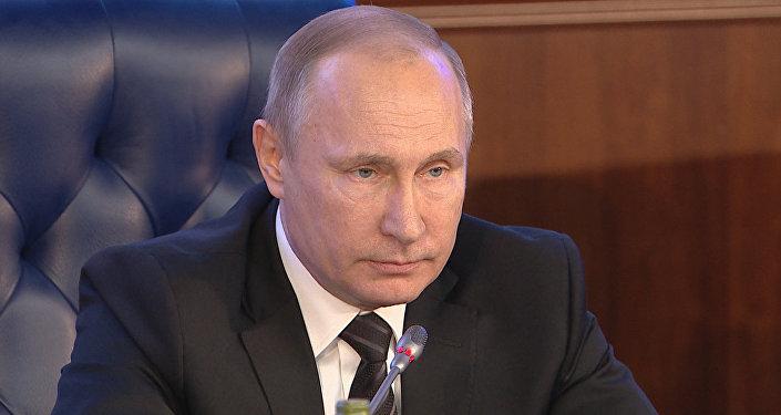 Песков раскрыл планы Владимира Путина нановогодние каникулы