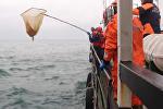 Спасатели на кораблях и вертолетах искали обломки Ту-154 в Черном море